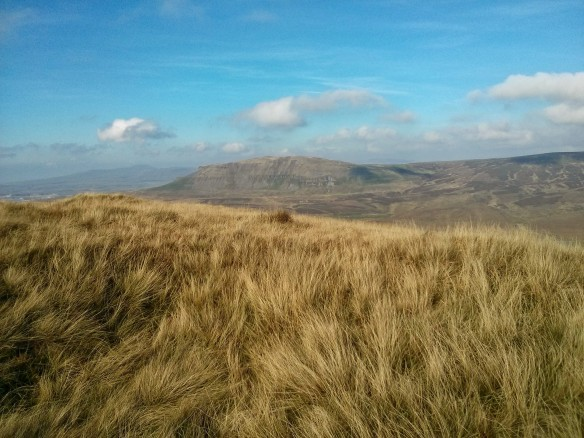Pen-Y-Ghent from Fountains Fell
