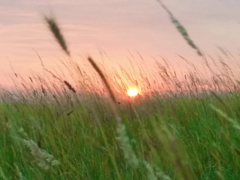 Bivouac Sunset